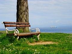 bench-439073__180 p