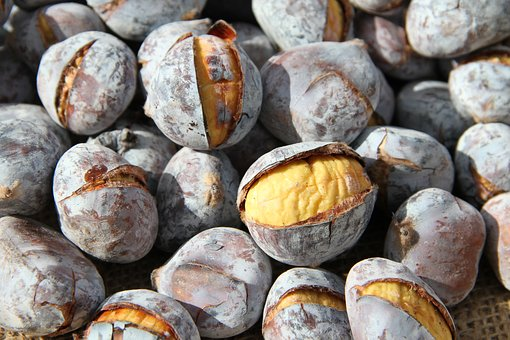 chestnuts-3398024__340