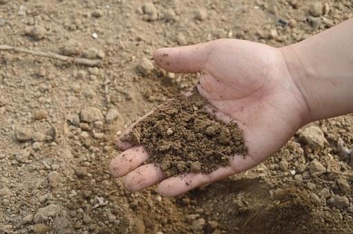 soil-766281__340