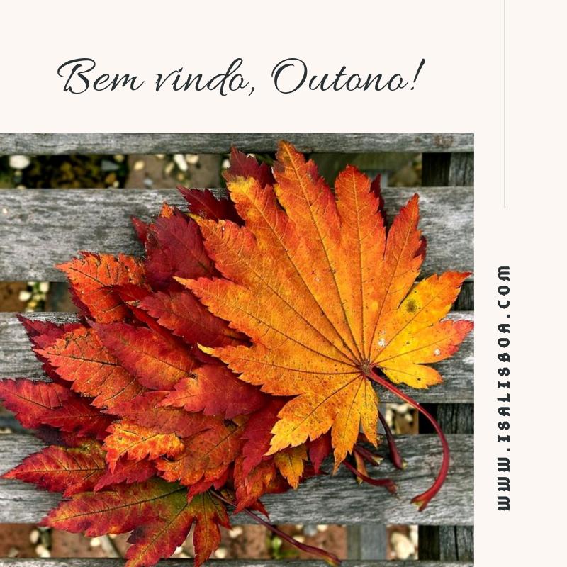 Bem vindo, Outono! (1).png